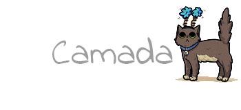 CAMADA H3