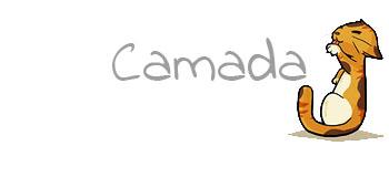 Camada J3