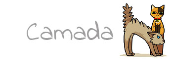 CAMADA N3