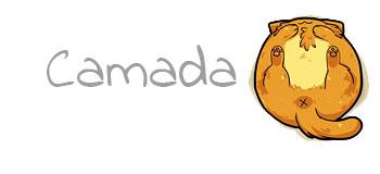 Camada Q2