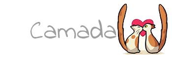 Camada W