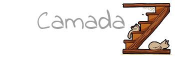 Camada Z